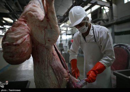 شهردار اردستان در واکنش به گزارش تسنیم: مشکلات بهداشتی کشتارگاه دامپزشکی اردستان برطرف میشود
