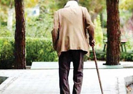 سالمندی؛ زنگ خطری که اردستان گوش شنوایی برای آن نیست