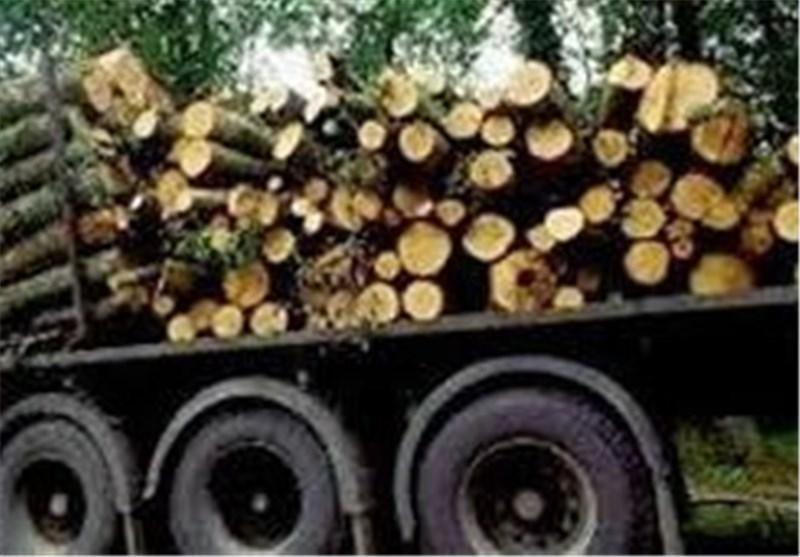 بیش از ۷۰۰ کیلوگرم چوب تاغ قاچاق در اردستان کشف شد
